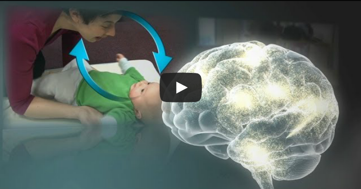 Serve and Return Interaction Shapes Brain Circuitry