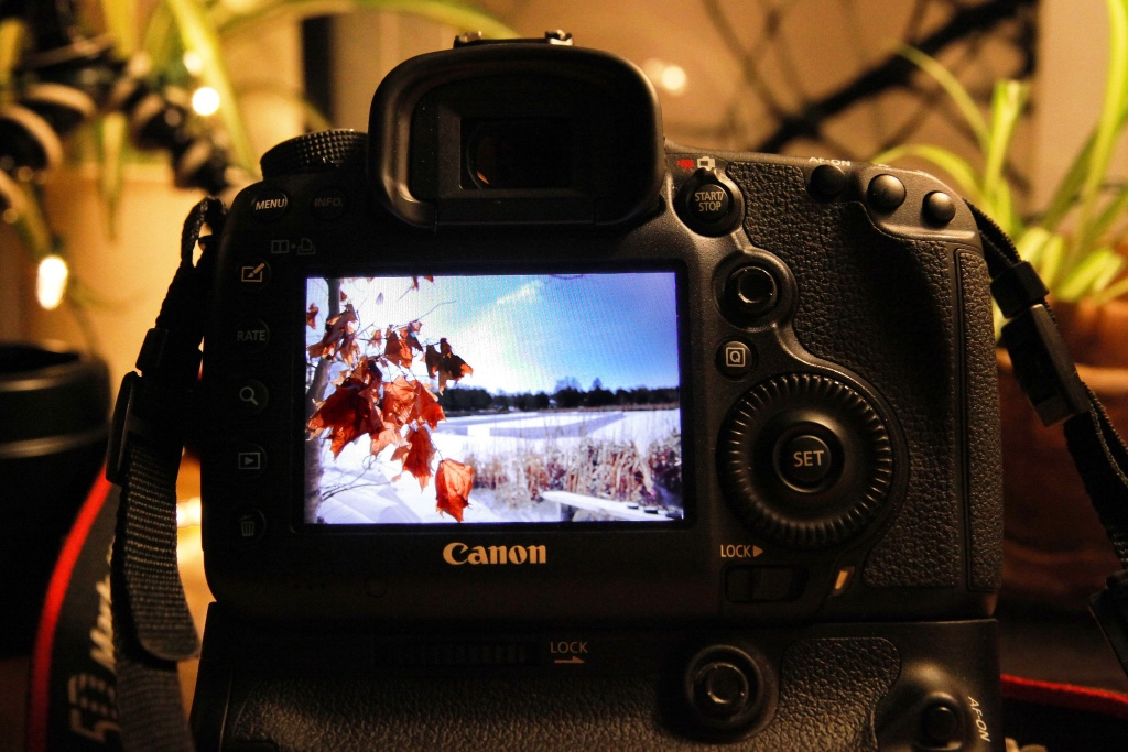 Millpond on Canon Camera