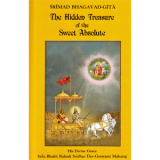 The Hidden Treasure of the Sweet Absolute cover