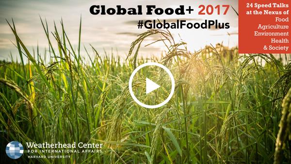 Image of Global Food Plus 2017 slide deck