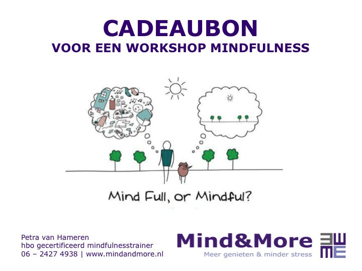 Bedrijfsfilmpje Mind&More