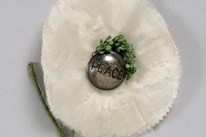 White 'peace' poppy