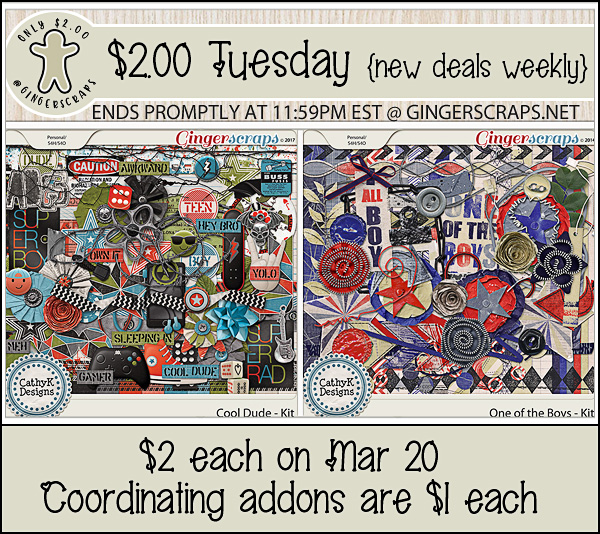 $1 Bake Sale, $2 Tuesday and Cool Dude Bundle Sale