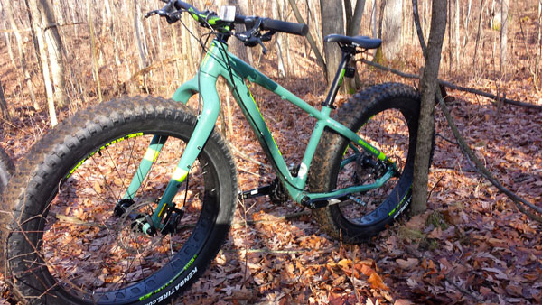 Jamis Roughneck fat tire bike, photo courtesy Jean Steinberg