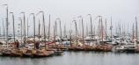 Tjotters in de haven