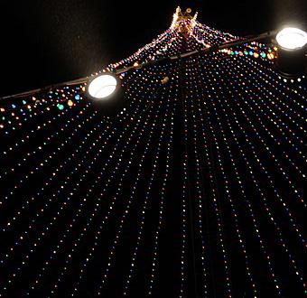 Zilker Holiday Tree Lighting