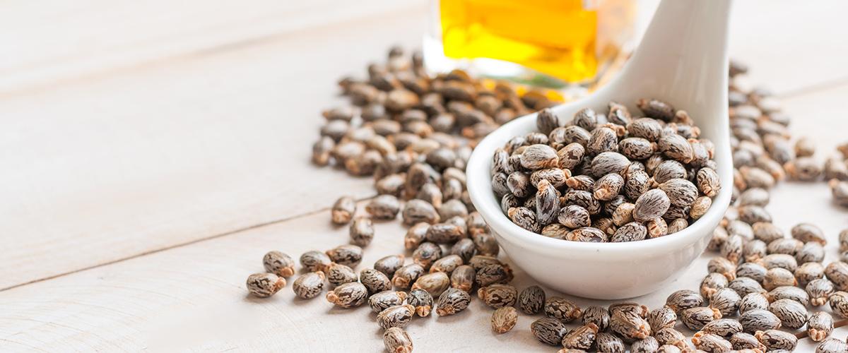 Les nombreux bienfaits et usages de l'huile de ricin