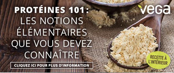 Protéines 101 : les notions élémentaires que vous devez connaître