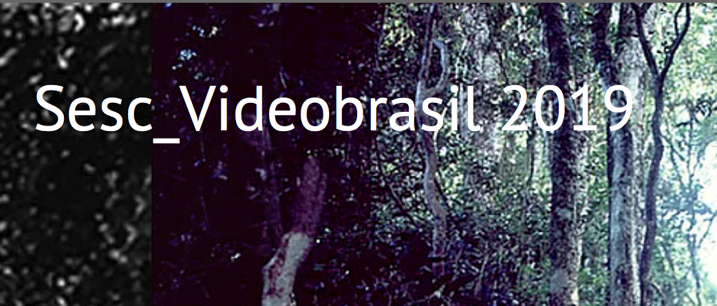 Brasil Screenshot