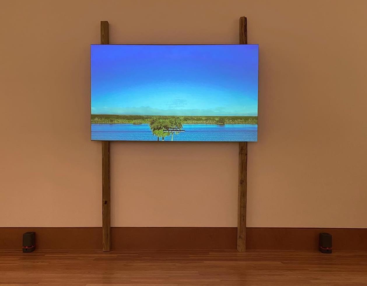 IMA alumna Sasha Wortzel's installation image