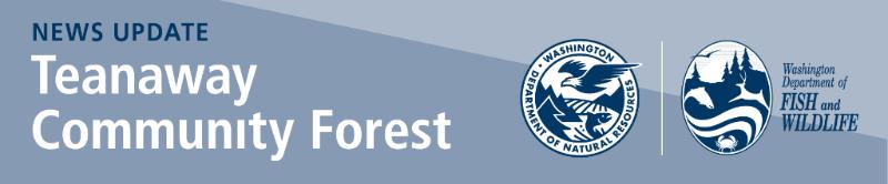 Teanaway Community Forest - header