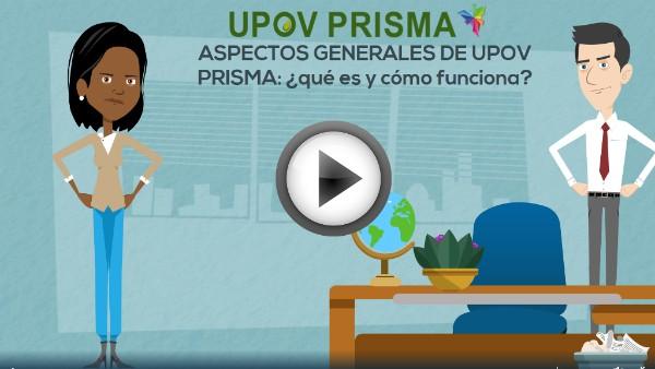 ASPECTOS GENERALES DE UPOV PRISMA:  ¿qué es y cómo funciona?