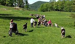 Sheldon Elementary Utilizing Farming in Vermont