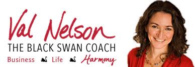 [Val Nelson logo]