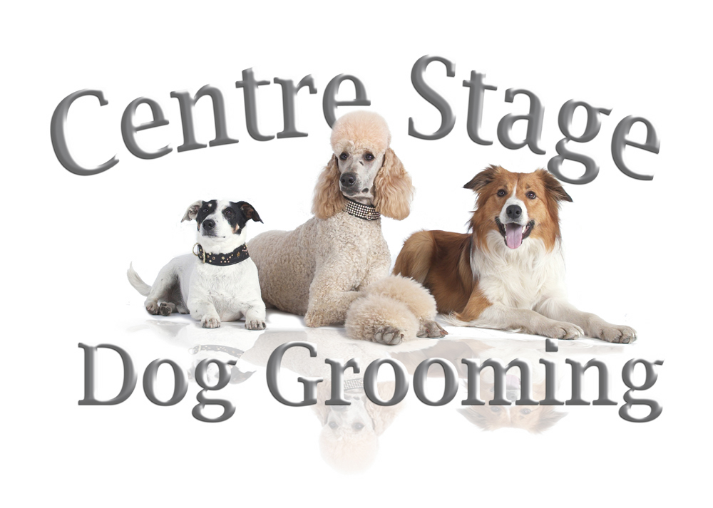 Centre Stage Dogs