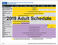 Adult Laminated Immunization Schedules