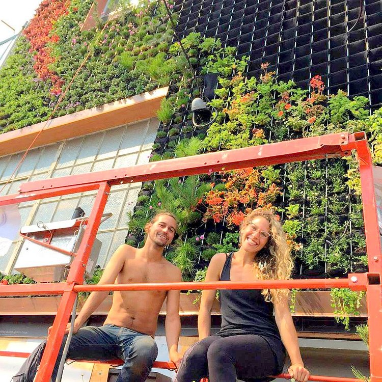 Living Facade Vertical Garden