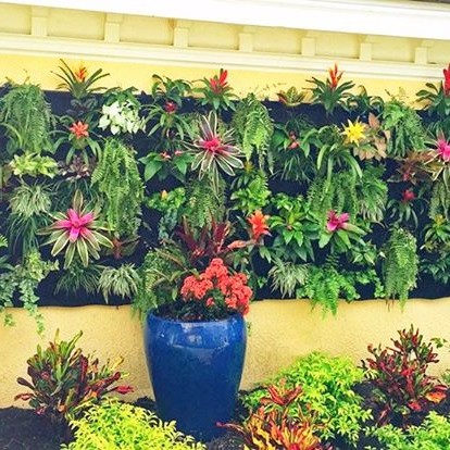 Tropical Color Vertical Garden