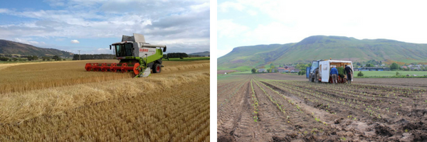 Photos of Channel Farm with combine & planting
