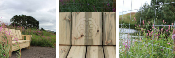 Photos of our new bench with carved marque and fencing by our pond