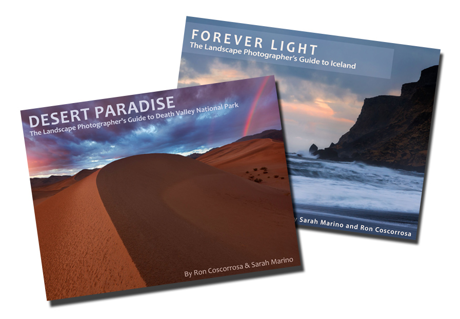 Desert Paradise & Forever Light