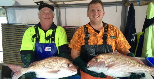 Two Leigh fisherman holding large NZ Snapper