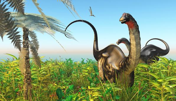 An artist's impression of a Brontosaurus.