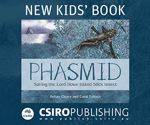 New kids book, Phasmid, promotion.