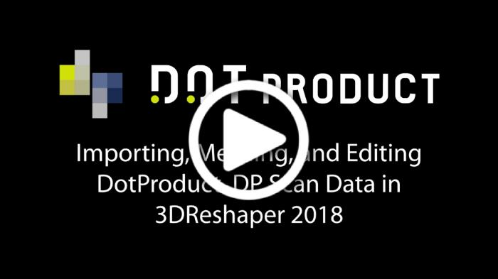 3DReshaper Video