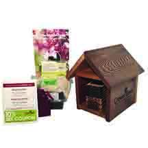 Edmunds Roses Beeworks Cabin Kit