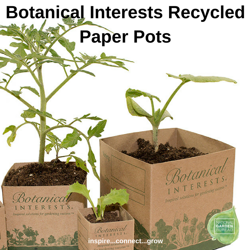 Botanical Interests Recycled Paper Pots