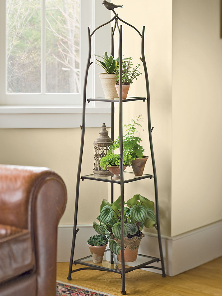 Gardener's Supply Co. Branch Plant Stand