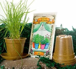 Windowsill Herb Garden from American Meadows
