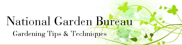 National Garden Bureau Garden Tips