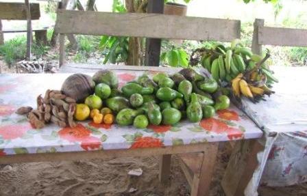 Fruta del vecino Alfredo
