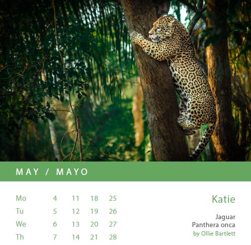 Anticipo del calendario