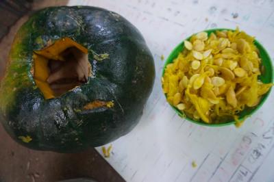 Pumpkin Enrichment