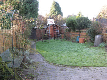 Permaculture Forest Garden Before