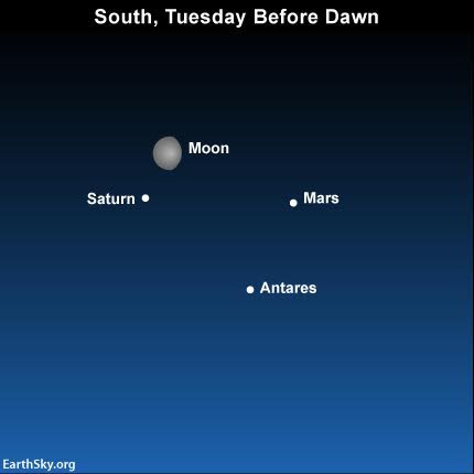 Before Dawn, Mars Saturn Antares Moon!
