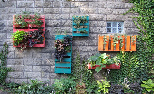 Pallet Garden on the Wall! Space Saver!