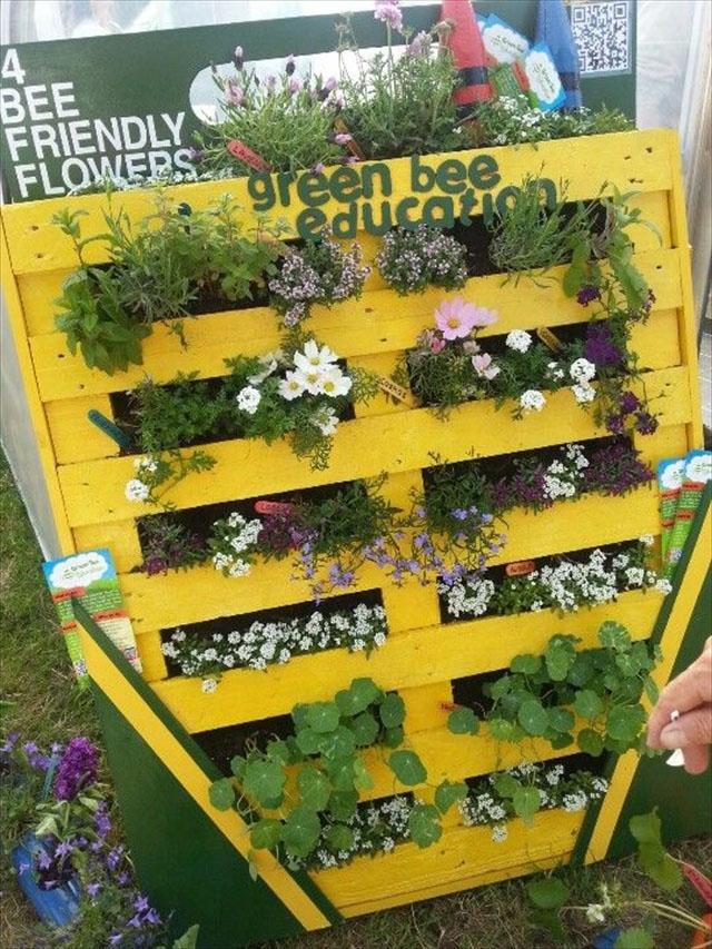 Pallet Garden for Bee Friendly Plants Education!