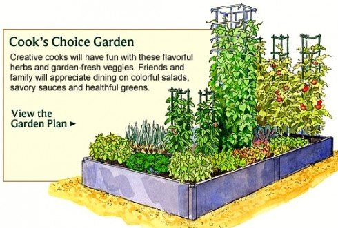 Garden Design when North is ona diagonal to your raised bed.