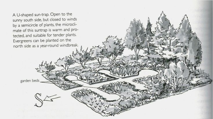 Garden Design U-Shaped Sun Trap Keyhole Permaculture