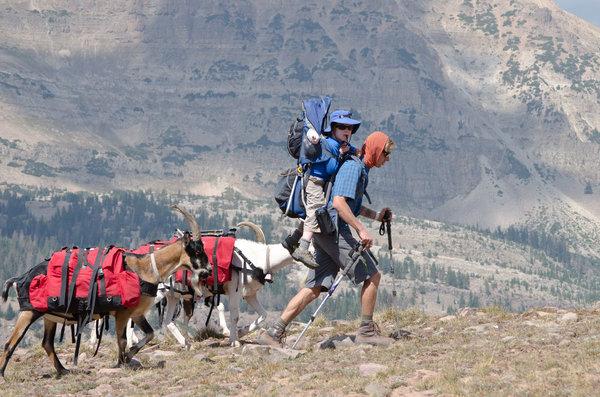 Capricorn Bruce Kirkby Adventurer Goats Backpack