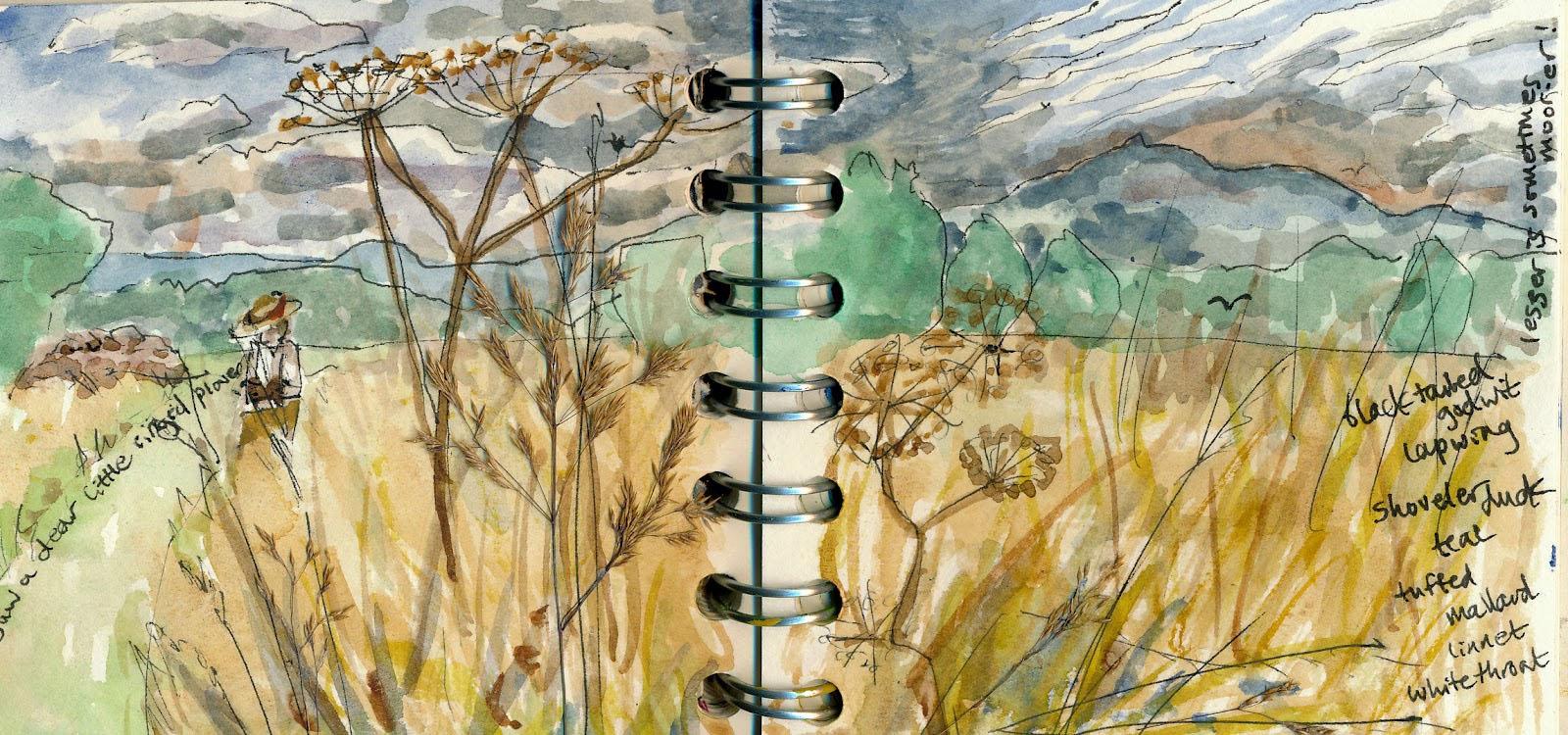 Jupiter Virgo Libra Chiron Uranus Notebook Art Landscape