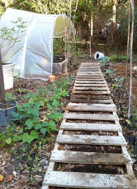 Pallet Path is Worm Farm Walkway!