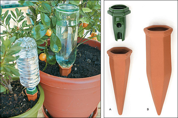 Terra cotta water spikes, steady water at the root zone for container plants!