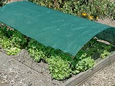 Shade Cloth over Remesh to protect veggies from summer heat!