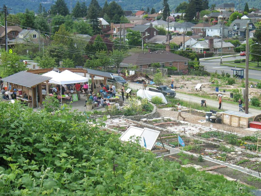Seattle Urban Food Forest June 2014!