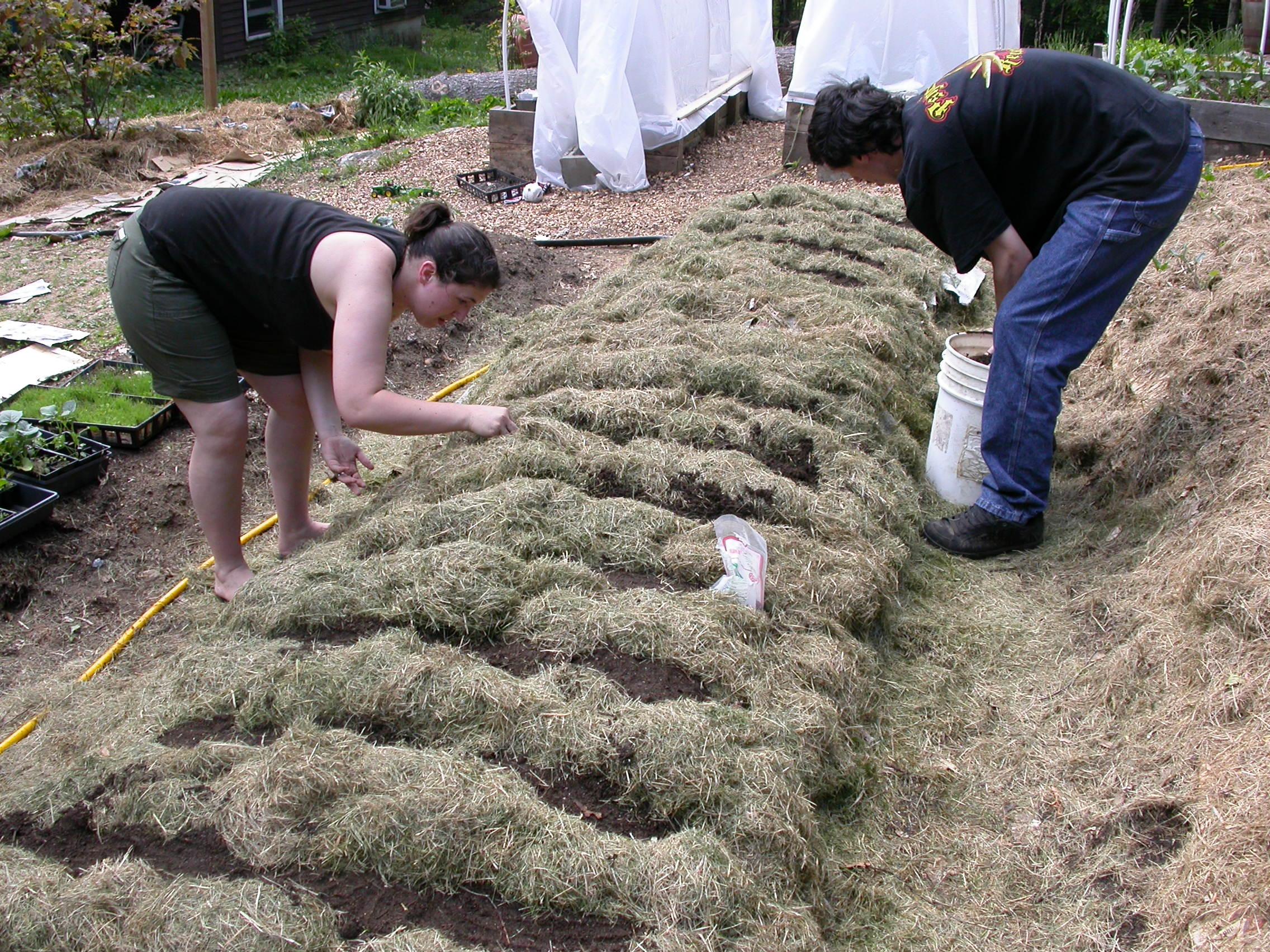 Soil No Till Lasagna Composting in Place, Sheet Mulching